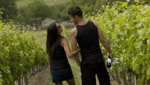 osoyoos-british-columbia-vineyard-local-top - Copy