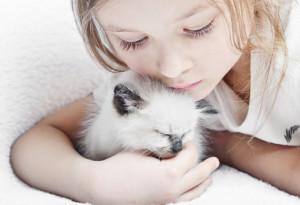 kitten-cat-kids-shutterstock_98379929-1